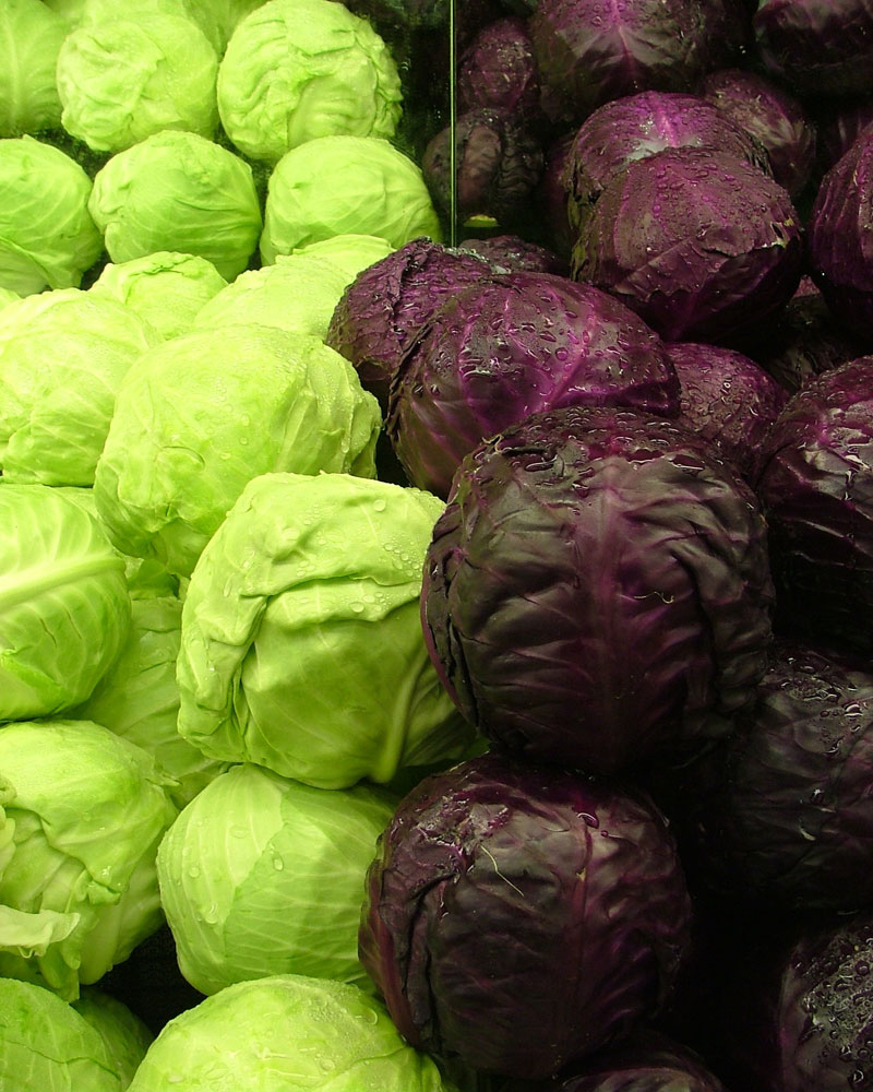 Cabbages_Green_and_Purple