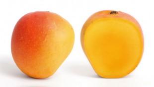 Mango-Health-benefits