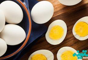 پروتئین تخم مرغ