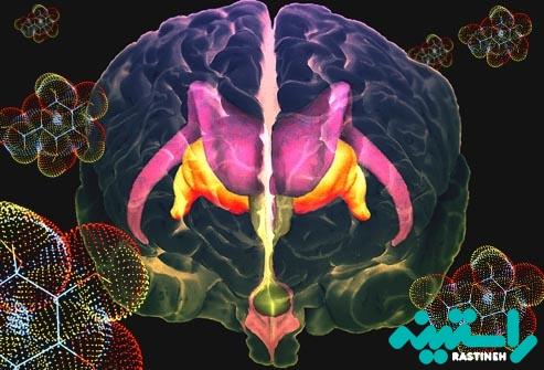 مغز و شیرینی جات