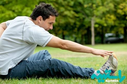 قبل از ورزش حرکات کششی انجام ندهید