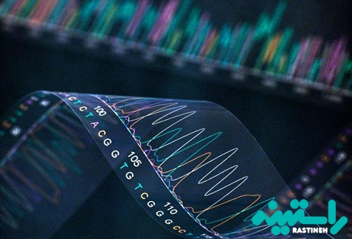 آزمایش DNA HPV