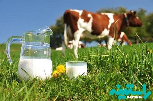 شیر گاو با 1٪ و 2٪ چربی