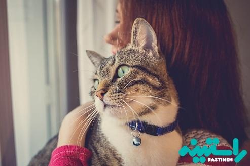 آلرژی به گربه