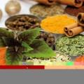 طب سنتی طب گیاهی