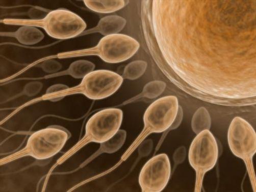 male infertility دلایل ناباروری و نازایی در مردان و چگونگی درمان آن