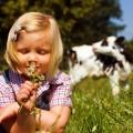 allergic-rhinitis-or-hey-fever