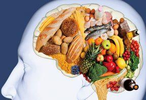 گروههای غذایی برای سلامت مغز