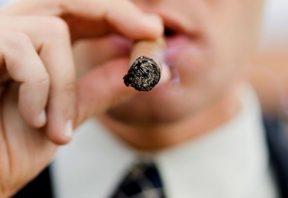 پیپ و سیگار برگ