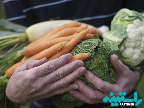 سبزیجات و میوههای تازه