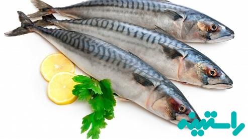 ماهی خال مخالی