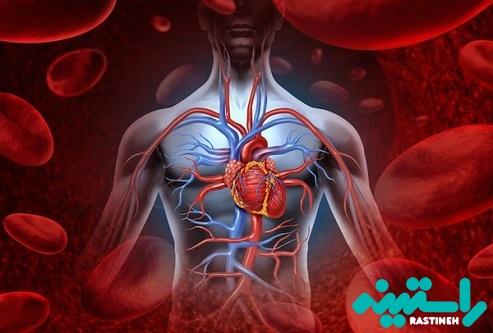 بهبود گردش خون