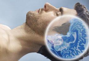 فعالیت مغز در خواب