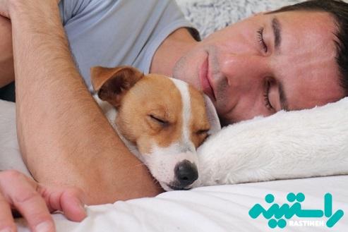 اجازه ورود حیوانات خانگی به تختخواب