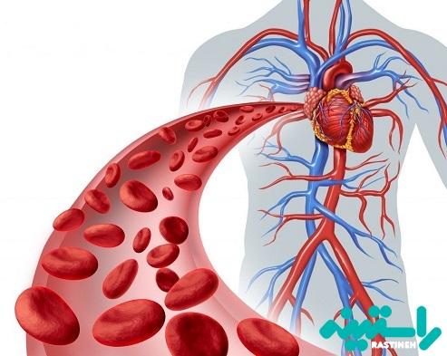 تقویت جریان خون و متابولیسم