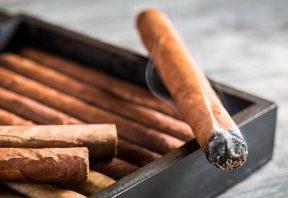 سیگار برگ