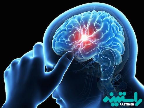 عملکرد مغز و اعصاب