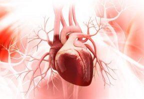 داشتن قلبی سالم