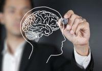 تازه سازی مغز