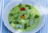 سوپ گازپاچوی سبز