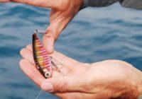 آسیب دیدگی ناشی از قلاب ماهیگیری